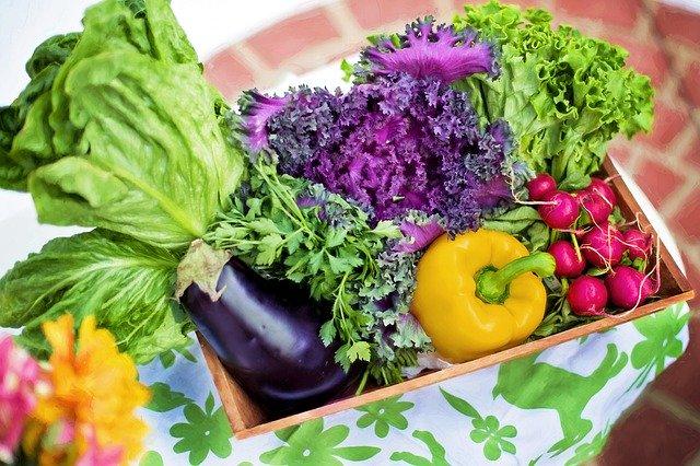 lecznicze warzywa